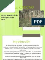 caucho (1).pptx