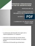 alteracionesdeldesarrollodelaregionoral-110429223119-phpapp02.pptx
