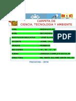 PACUCHA.docx