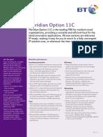 Meridian Option11c