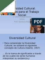 Diversidad Cultural. Desafios Para El Desempe o Profesional (1)