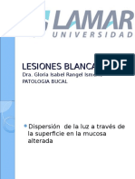 Lesionesblancas 150318202555 Conversion Gate01