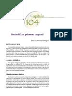 Bosinofilia Pulmonar Tropical