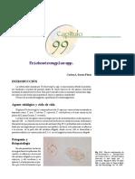 Trichostgrongylus.spp