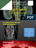 suprarrenal.pptx