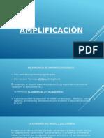 La Amplificación - Teoria de La Tradución