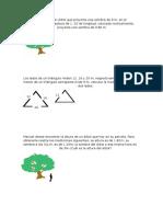 Practica problemas semejanza congruencia triángulos.docx