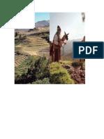 imagenes evaluacion 8 regiones.docx