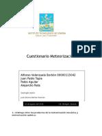 Cuestionario meteorizacion