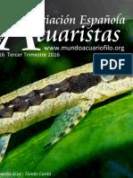 Boletín Asociación Española de Acuaristas 16