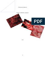Como é constituído o sangue.docx