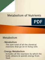 Pert 8. Metabolism of Nutrients