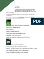 Guia de Remédios Floral
