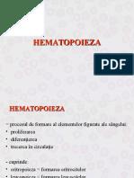 26931180-Hematopoieza