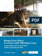 Biogas From Slurry in a Farm With 100 Dairy Cows