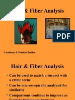 3. Hair Analysis