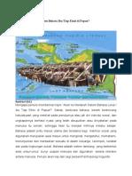 Akan Ke Manakah Sistem Bahasa Ibu Tiap Etnis Di Papua