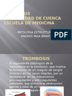 trombosispatologiaestructural-121108230652-phpapp01