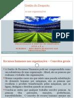 Pp1 Módulo 6 Recursos Humanos Do Desporto Organização e Gestão Do Desporto