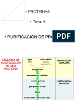 2015- Teoría 08 BG Purificacion de proteinas-Clase4