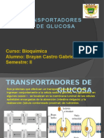 transportedelaglucosa-131107191538-phpapp02.pptx