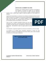 Estudio de Caso El Remero y Sus Jefes Leyda Sanabria