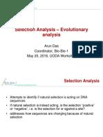 Selection Analysis -- Evolutionary Analysis v1.1