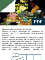 Caracterização Tecnológica de Minérios.pptx
