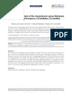 Phylogenetic analysis of the sharpshooter genus Subrasaca Young, 1977 (Hemiptera, Cicadellidae, Cicadellini)