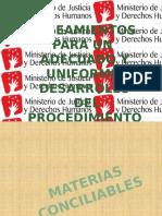 LINEAMIENTOS (diapositivas)
