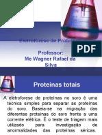 Eletroforese de Proteinas