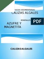Calizas Algales y Magnetita - Copia
