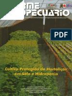 Cultivo Protegido e Hidroponia (2)