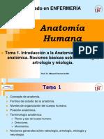 T1_ANAT_ENF_12-13