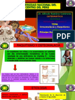 Osteomalacia y Raquitismo