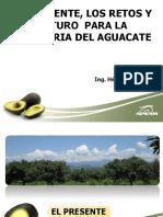 7. Los Retos Presentes y Frutos Para La Industria Del Aguacate Por Ing. Héctor Guillén León APEAM