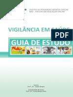 Guia Estudo VIGILANCIA Final Revisao