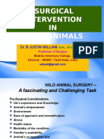 PPT._SURGERY_WILD_ANIMALS.ppt