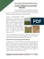 EVALUACION DEL IMPACTO AMBIENTAL.docx