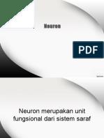 Neuron Dan Impuls