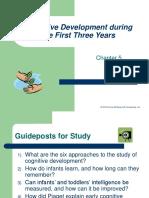 05 Prenatal-Infancy Cognitive Development