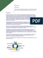 PMO2.pdf