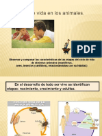 CIENCIAS NATURALES - POWER POINT 2 - 2 BASICO.pptx