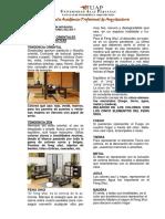 T. ORIENTAL U. ALAS PERUANAS.pdf