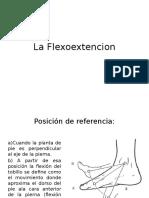 La Flexoextencion
