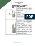 Test_TRO.pdf