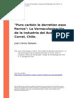 Juan Carlos Skewes. (2001). Puro Carbon Le Derretian Esos Fierros La Vernacularizacion de La Ind..