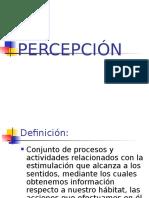 4 Percepción