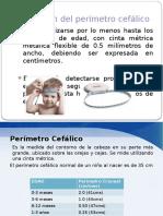 perimetro cefalico.pptx