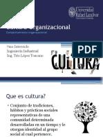 20 Cultura Organizacional